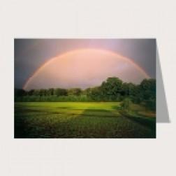 Faltkarte «Regenbogen»
