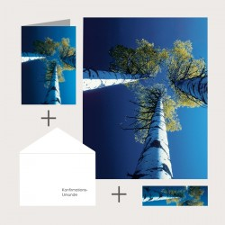Kombi-Set «Blick nach oben»