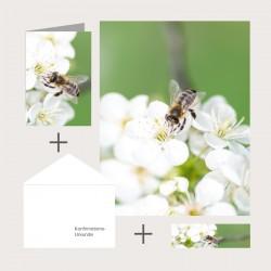 Kombi-Set «Blütenzauber»