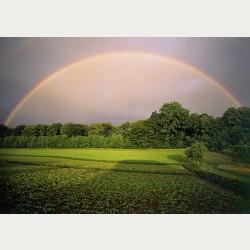 Bildbeschreibung - Regenbogen