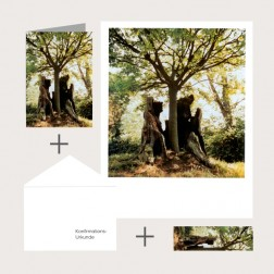 Kombi-Set «Der Baum»
