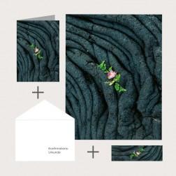 Kombi-Set «Neues Erwachen»
