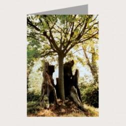 Faltkarte «Der Baum»