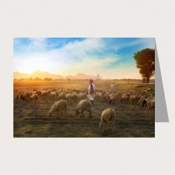 Faltkarte «Hirte»