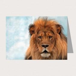 Faltkarte «Löwe»