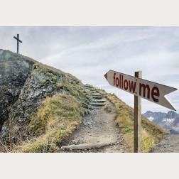 Bildbeschreibung - Follow Me