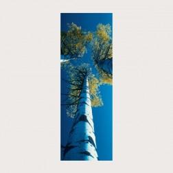 Lesezeichen «Blick nach oben»
